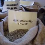 Guatemala Purulha BIO